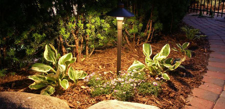 Path & Area Lighting. Encore Landscape Lighting ... - Encore Lighting - Livingston Park Nursery
